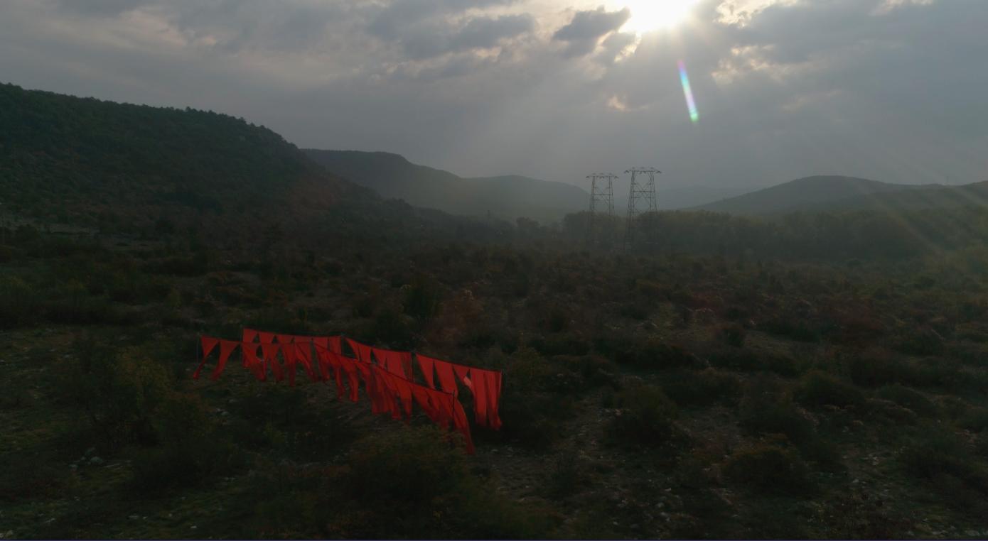 SEGNI / installazione di land art sul Carso