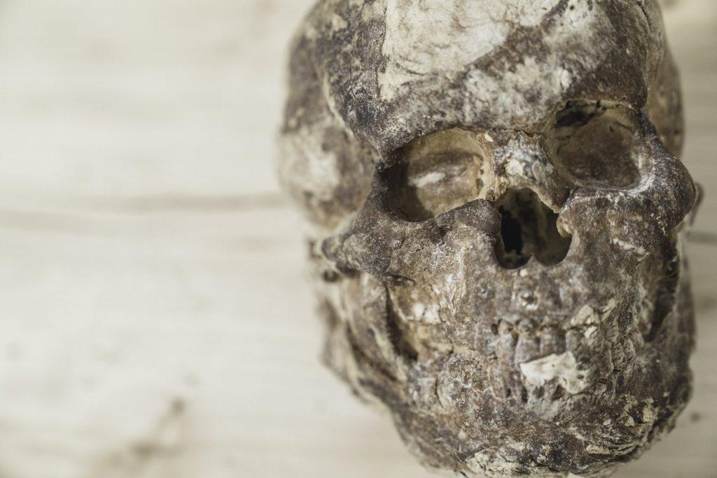 Vanitas (pane lavorato a stampo), installazione deperibile by Cosima Montavoci