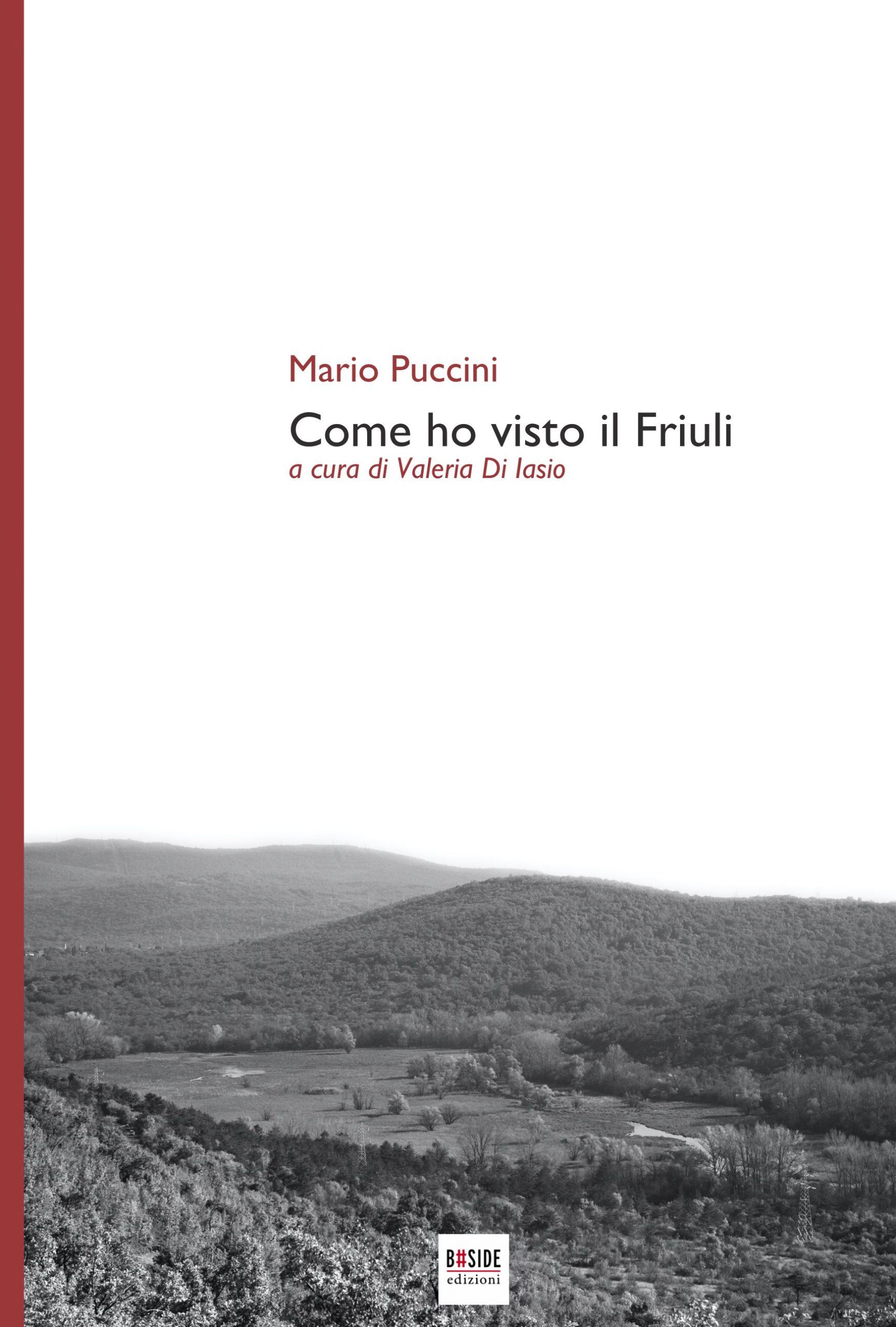 Come ho visto il Friuli